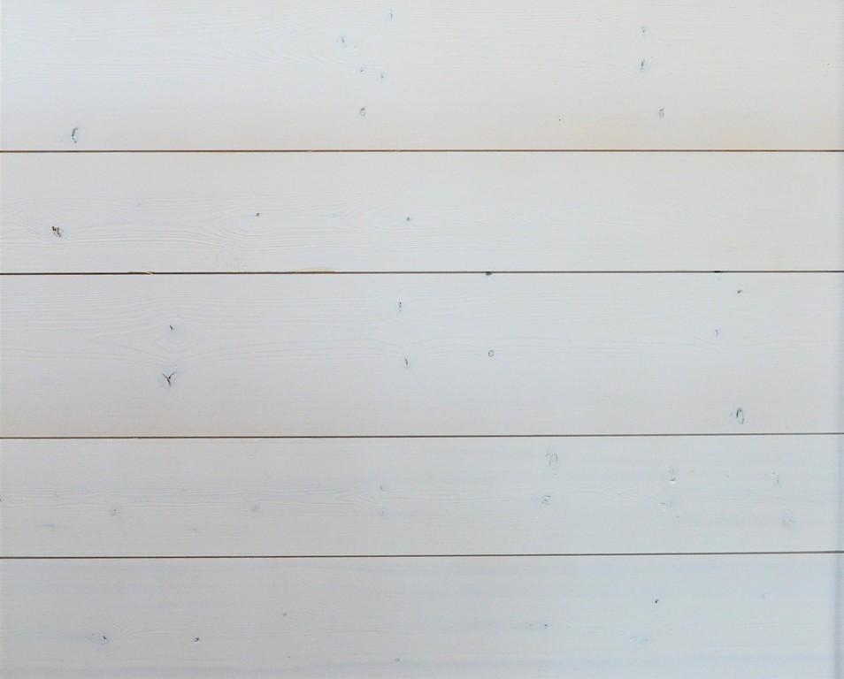 White Shiplap Century Lumber